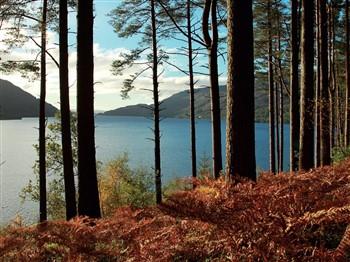 Autumn Gold All Inclusive Break, Scotland