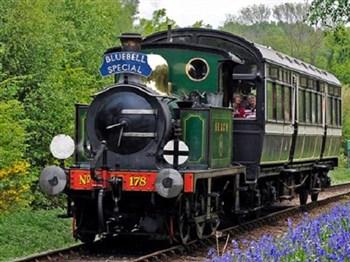 Bluebell Railway with a Ploughman's & Cream Tea
